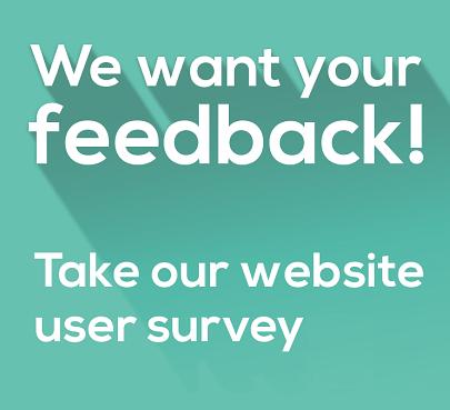 websites-survey