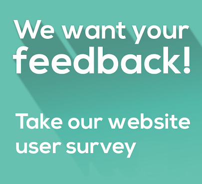websites-survey