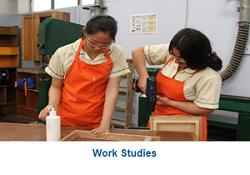 WorkStudies 250